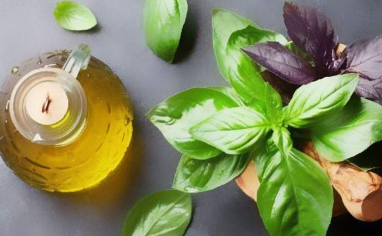 olio basilico